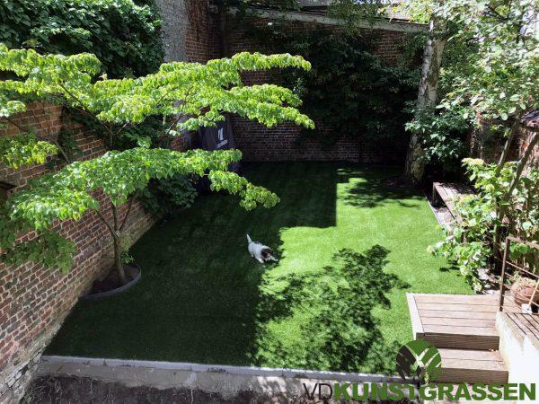 Royal Grass Sense voor stadstuin Brussel