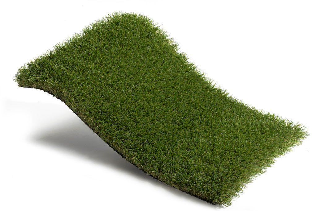 Royal-Grass-Bloom